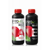 Pro XL Bloom A+B 500ML