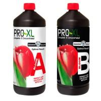 Pro XL Bloom A+B 1L