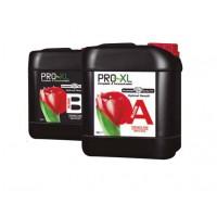 Pro XL Bloom A+B 10L