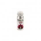 Pro XL Flora Exploder 250ml