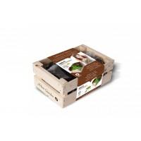Baza Seeds & Mini Garden Pluksla Groen & Rood