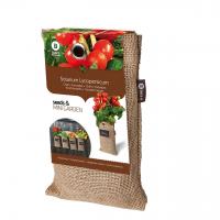 Baza Seeds & Mini Garden Hang Jute kweekzak Cherry Tomaat Cerise