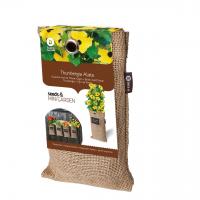 Baza Seeds & Mini Garden Hang Jute kweekzak Suzanne met de mooie ogen