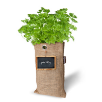 Baza Seeds & Mini Garden Hang Culture Bag Parsley
