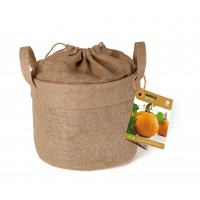 Baza Seeds & Mini Garden Pumpkin in Burlap Sack