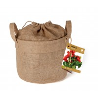 Baza Seeds & Mini Garden Tomato in Burlap Sack