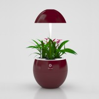 UrbanGreen I-Grow G301A, rood(wit led)