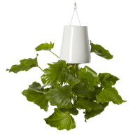 Boskke Sky Planter Keramisch, small, wit