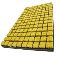 Cultilene Sbs cutting plate 150-hole 2,5 x2, 5x4cm 18tr/doos