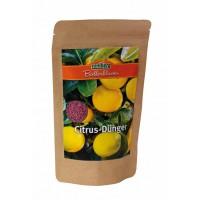 Romberg meststof voor citrus planten / 250 gr