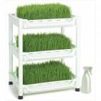 Easygreen growsystem