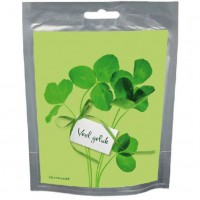 Seeds & Wishes Pastel Lucky Clover