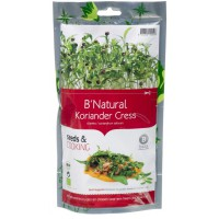 Baza Seeds & Cooking Koriander cress