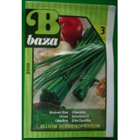 Baza Seeds & Garden Basilicum Grofbladig