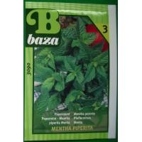Baza Seeds & Garden Pepermunt