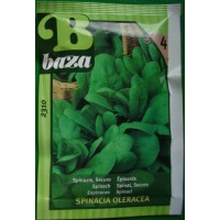 Baza Seeds & Garden Spinazie Securo