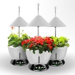 Urbangreen I-Grow Lighting