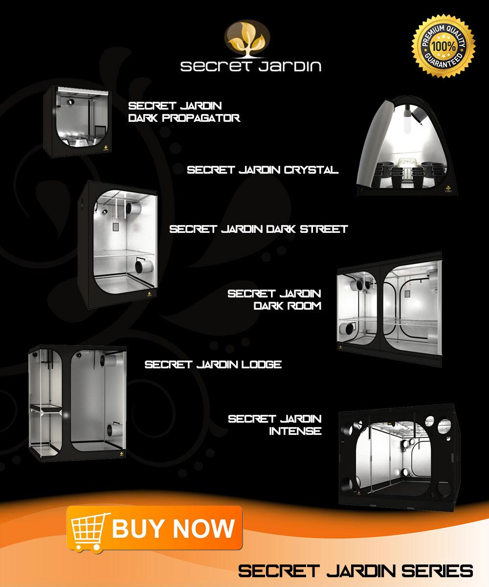 Buy Secret Jardin   Order at the Jardin Secret specialist