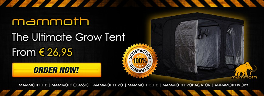 Mammoth Grow Tent now at Garden Centre Holland